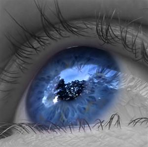 Olhar - 1